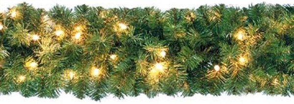 Scharnberg LED--Lichterkette Tannen D18cm L270cm 58009